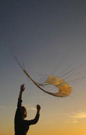susak air art festival (4)