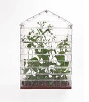 lego_greenhouse_sebastian_bergne (5)
